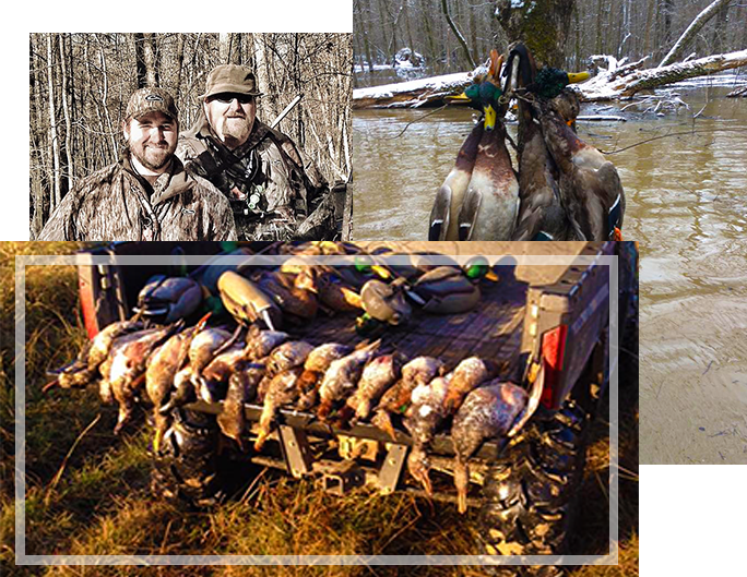 Guided Duck Hunts In Arkansas DryBayou Lodge - Affordable guide service
